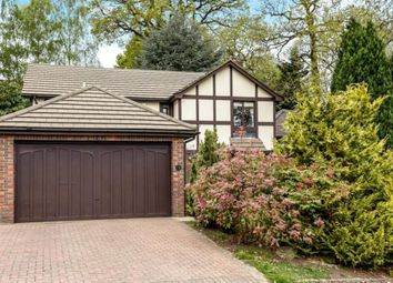 Thumbnail 4 bedroom detached house for sale in Holmbury Park, Bromley