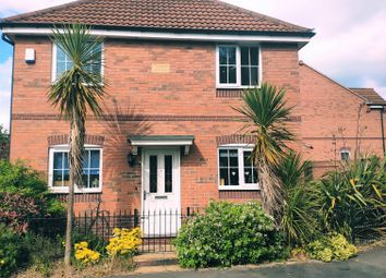 Thumbnail 3 bed detached house to rent in Mansfield