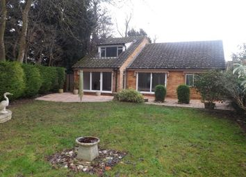 Thumbnail 4 bed detached bungalow to rent in Selwyn Close, Great Shelford, Cambridge