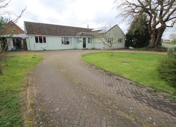 Thumbnail 4 bed detached bungalow for sale in Mersea Road, Blackheath, Colchester