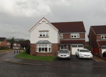 Thumbnail 4 bedroom detached house to rent in Rankine Wynd, Tullibody, Alloa