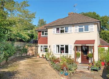 Thumbnail 4 bed detached house for sale in Ash Tree Close, Grayswood, Haslemere, Surrey