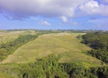 Thumbnail Land for sale in Gully Ridge, Sion Hill, St. James