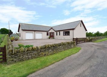 Thumbnail 4 bedroom detached bungalow for sale in Forfar, Forfar, Angus