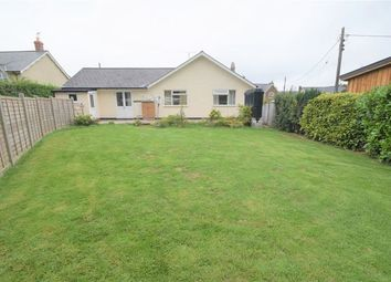 Thumbnail 4 bed detached bungalow to rent in Puddington, Tiverton