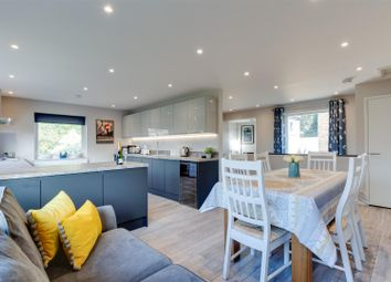 Thumbnail 4 bed detached house for sale in Brackenbury Close, Ipswich