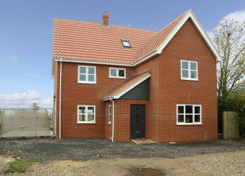 Thumbnail 5 bedroom detached house for sale in Chapel Street, Rockland St. Peter, Attleborough