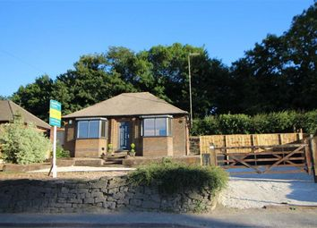 Thumbnail 2 bed detached bungalow for sale in Ladygrove, Sawmills, Ambergate, Derbyshire