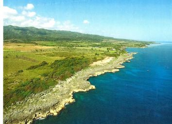 Thumbnail Land for sale in Laughlands, Saint Ann, Jamaica