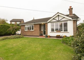 Thumbnail 3 bedroom terraced bungalow for sale in 2, Windermere Avenue, Belfast