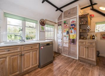 Thumbnail 3 bed detached house to rent in Blackbrook, Dorking, Surrey
