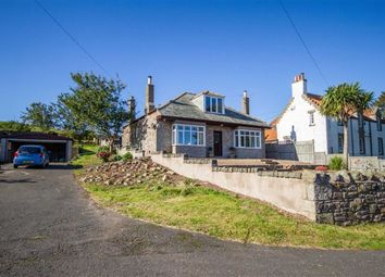 Thumbnail 4 bed detached bungalow for sale in East Flemington, Burnmouth, Berwickshire