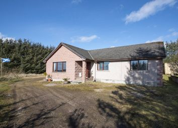 Thumbnail 4 bed bungalow for sale in New Byth, Turriff, Aberdeenshire