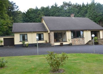 Thumbnail 6 bed detached house for sale in Bryansford Road, Newcastle, County Down