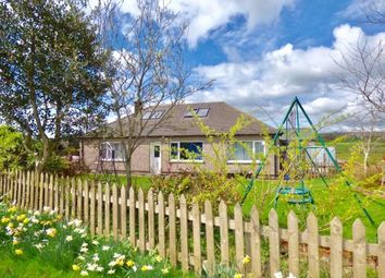 Thumbnail 6 bed detached bungalow for sale in Hawklands, Isle Of Dalton, Dalton, Lockerbie, Dumfries And Galloway