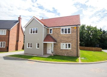 Thumbnail 4 bed detached house for sale in Maitland Close, Henham, Essex