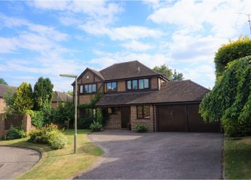 Thumbnail 4 bed detached house for sale in Zinnia Drive, Bisley, Woking