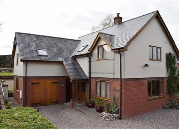 Thumbnail 5 bed detached house for sale in 7, Ael Y Bryn, Carno, Caersws, Powys