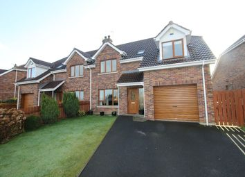 Thumbnail 4 bed semi-detached house for sale in Eglantine Close, Culcavy, Hillsborough