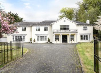 Thumbnail 6 bedroom detached house to rent in Kier Park, Ascot