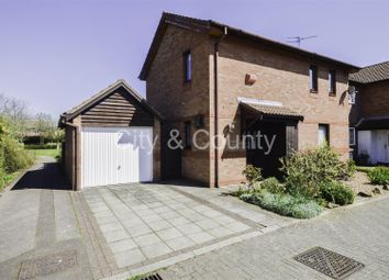 Thumbnail 4 bed detached house for sale in Derwood Grove, Werrington, Peterborough