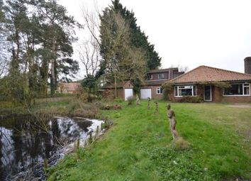 Thumbnail 5 bed detached house for sale in Norwich Road, Rackheath