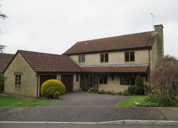 Thumbnail 4 bed detached house to rent in Cedar Fields, West Coker, Yeovil