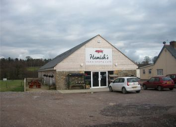 Thumbnail Office for sale in Prowles Cross, Closworth, Nr Ryme Intrinseca, Yeovil