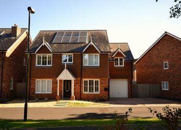 Thumbnail 5 bed detached house for sale in Hawthorn Way, Billingshurst