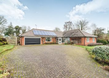 Thumbnail 4 bed detached bungalow for sale in Barncroft, Appleshaw, Andover