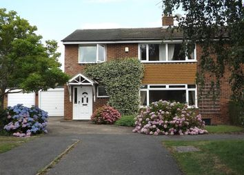 Thumbnail 4 bed semi-detached house to rent in St Johns Meadow, Blindley Heath