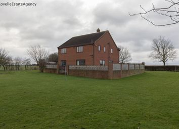 Thumbnail 4 bed detached house to rent in East Butterwick, Scunthorpe