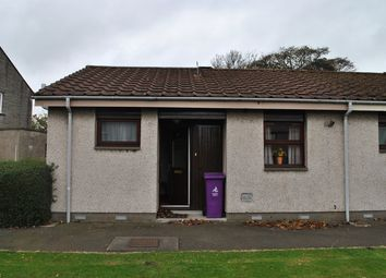 Thumbnail 1 bedroom terraced bungalow to rent in Bloomfield Road, Arbroath