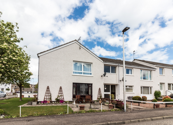 Thumbnail 2 bed flat to rent in 23 Pitreuchie Place, Forfar