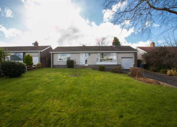Thumbnail 2 bed terraced bungalow for sale in 3, Orchard Drive, Newtownards