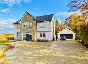 Thumbnail 4 bed detached house for sale in Parkneuk Road, Blantyre, Glasgow