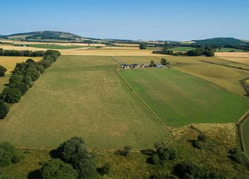 Thumbnail Farm for sale in Old Rayne, Insch