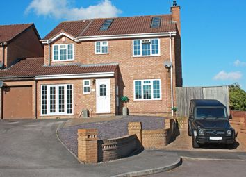 Thumbnail 4 bed detached house to rent in Basil Close, Swindon
