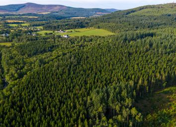 Thumbnail Land for sale in Auchattie Wood, Banchory, Aberdeenshire