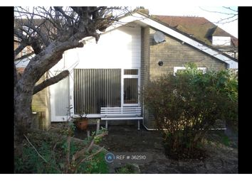 Thumbnail 3 bed bungalow to rent in Carol Close, Brighton