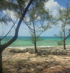Thumbnail Land for sale in , Eleuthera, The Bahamas
