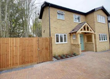 Thumbnail 4 bed detached house for sale in Blenheim Way, Stevenage