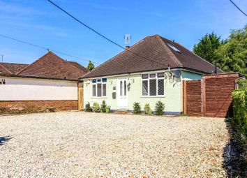 Thumbnail 3 bed bungalow to rent in Halebourne Lane, West End, Woking, Surrey