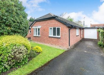 Thumbnail 3 bed bungalow for sale in North Warnborough, Hampshire