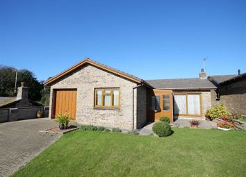 Thumbnail 2 bed detached bungalow for sale in Quarry Close, Bude, Cornwall