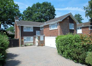 Thumbnail 5 bed detached house for sale in Pine Walk, Liss Forest, Hampshire