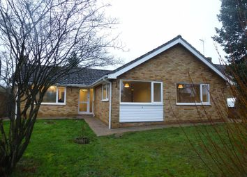 Thumbnail 4 bed bungalow to rent in Coltsfoot Close, Wickhambrook, Newmarket
