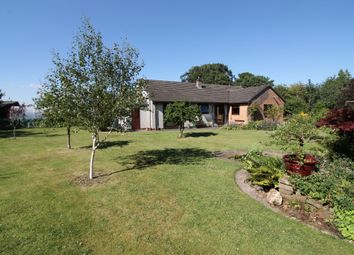 Thumbnail 3 bed detached bungalow for sale in Great Orton, Carlisle