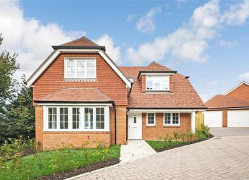 Thumbnail 3 bed bungalow for sale in Newick Hill, Ghyll Croft, Newick, Lewes, East Sussex