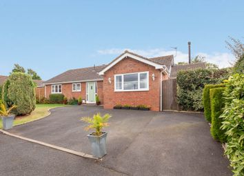 Thumbnail 3 bed bungalow for sale in Allwyn, Callows Meadow
